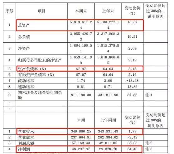 """揭幕""""黑马""""华宇:负债率68%,半年销金131亿"""